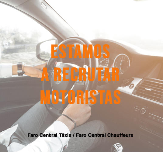 WE ARE LOOKING FOR A DRIVER / CHAUFFEUR